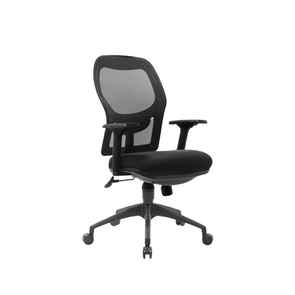 Esevel Ergonomic Computer Chair